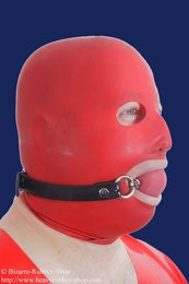 Ball gag harness option lockable