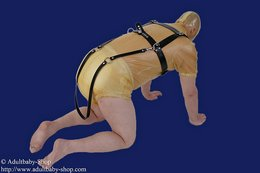 Adultbaby cheast- run harness with a big chest plate