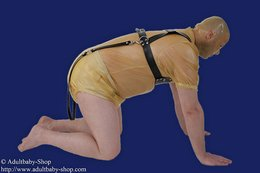 Adultbaby cheast- run harness with a little chest plate